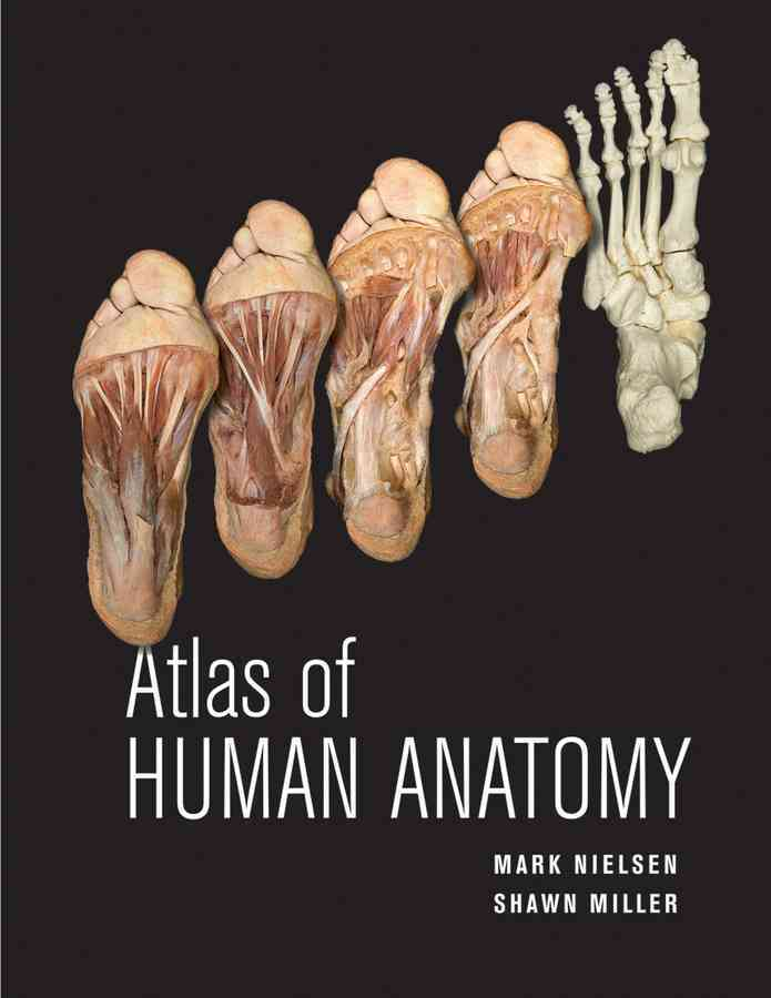 Atlas of Human Anatomy By Nielsen, Mark/ Miller, Shawn D.